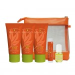 California Mango Travel Kit (Normal to Dry)