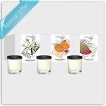 Loma Scented Candles