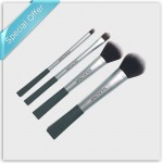 SilkLine™ 4 PC Brushes Set (Cosmetic)