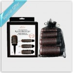 Aria Beauty 4 Piece Interchangeable Round Brush Set